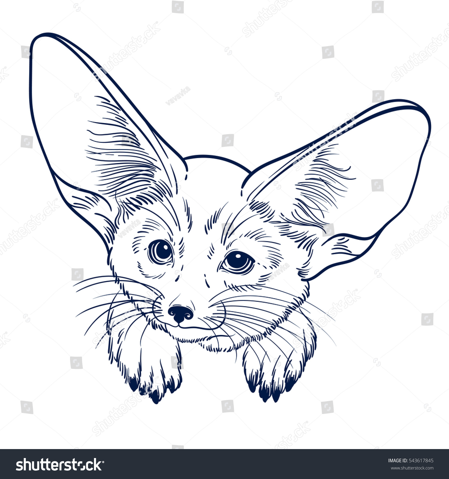 cute animal little fox fennec children stock vector 543617845