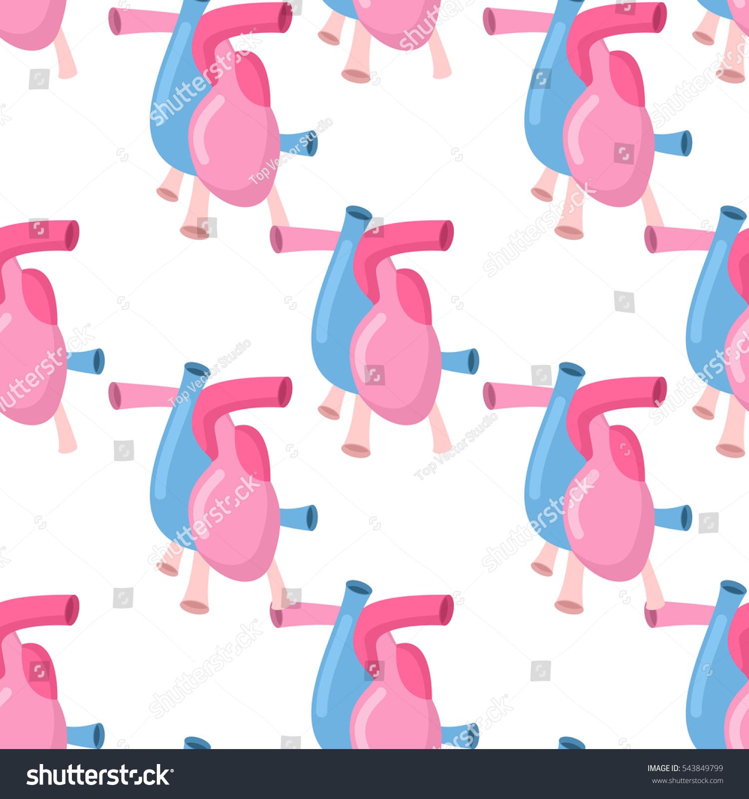 Heart Anatomy Body Seamless Pattern Atrial Stock Vector 543849799 ...
