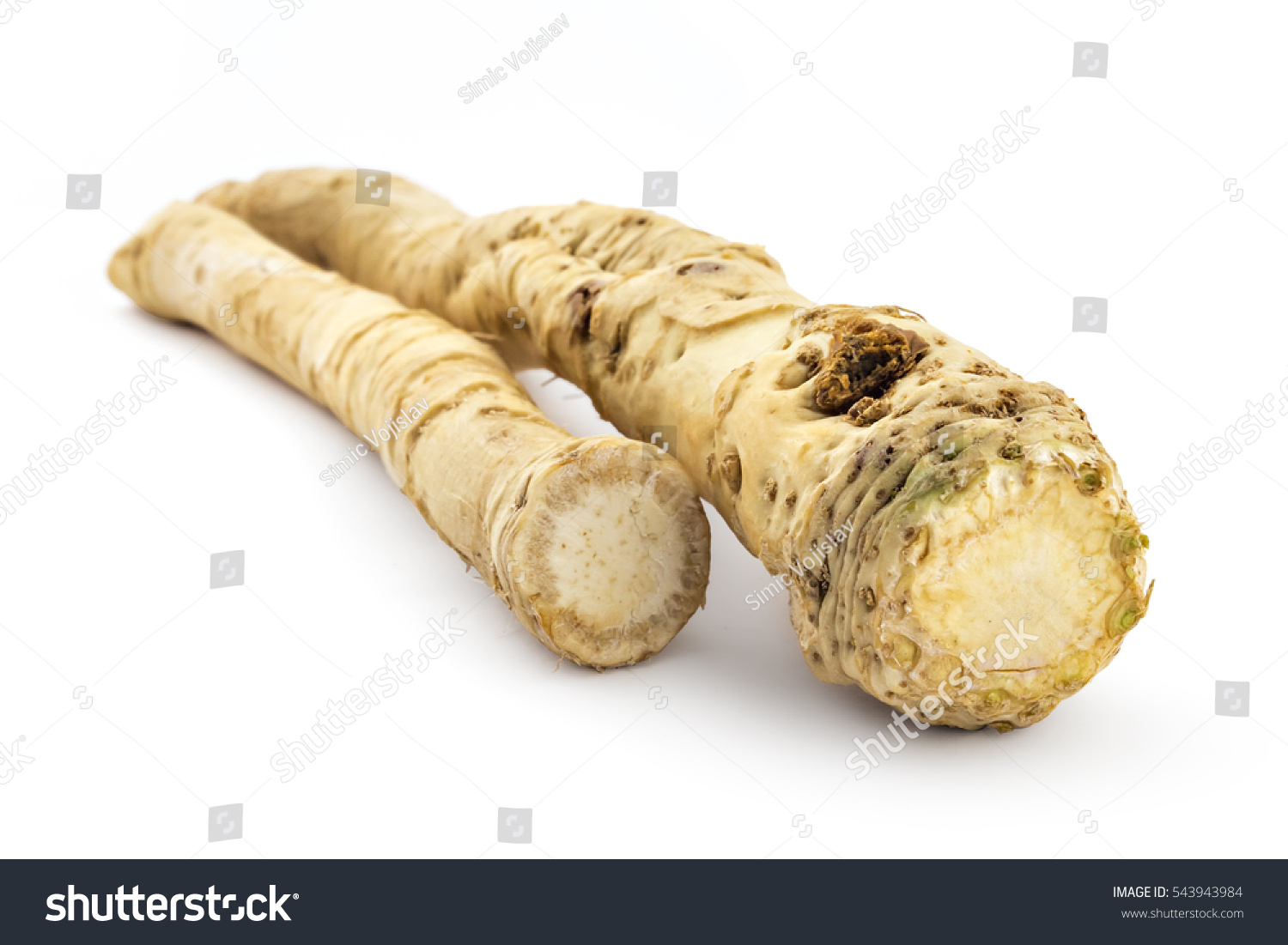 how to prepare fresh horseradish root
