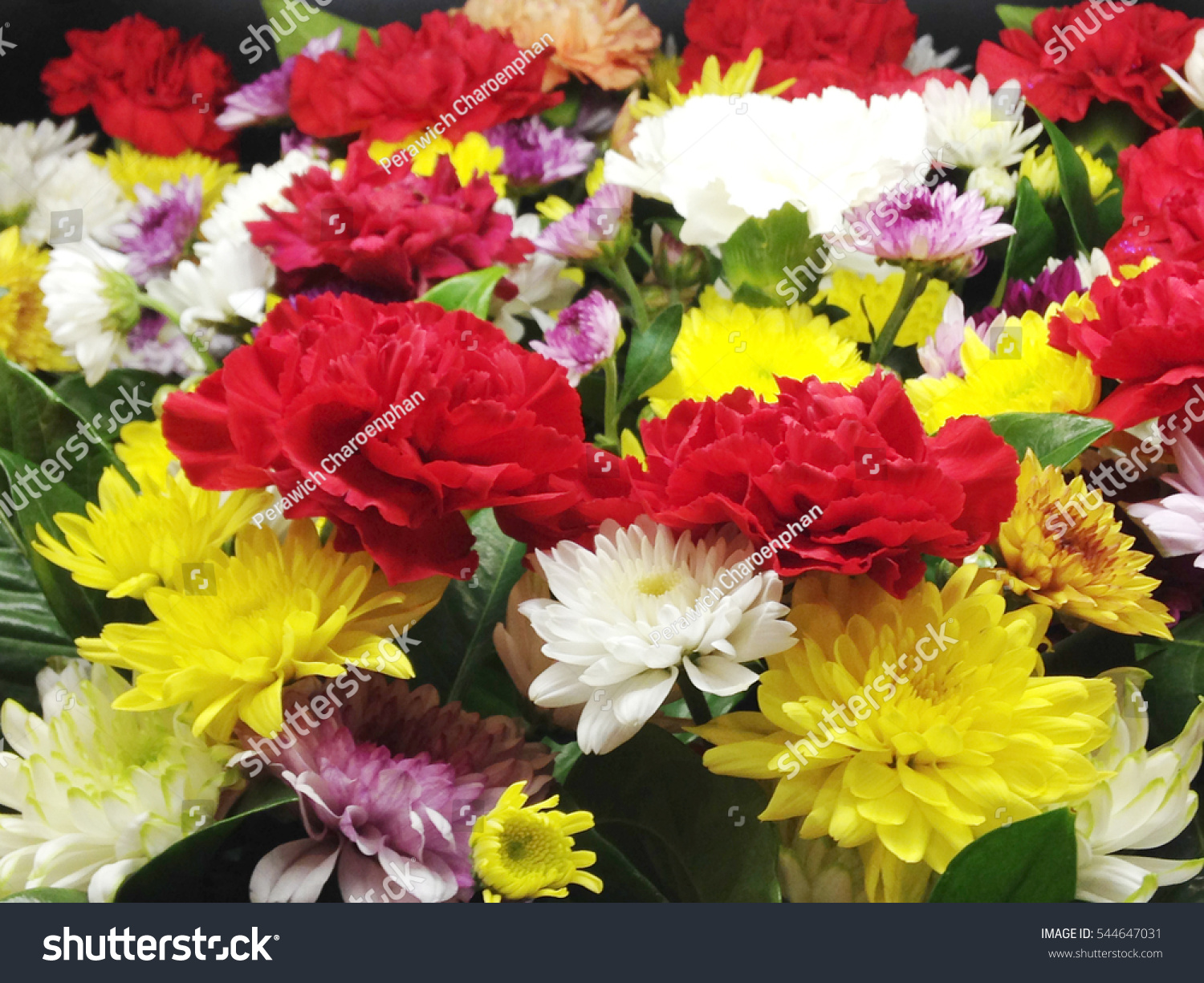 Closeup Pile Colorful Flowers Stock Photo (Royalty Free) 544647031 ...