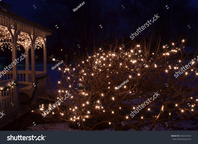 Christmas Bush Lights.Night Lights On Gazebo Bush Christmas Stock Photo Edit Now
