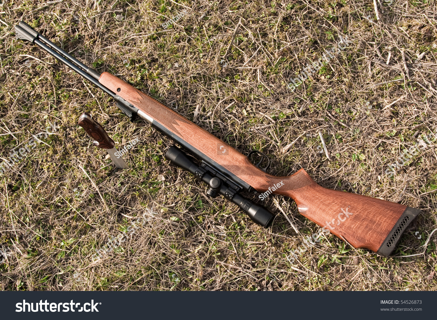 Pneumatic Rifle With A Knife On Ground Stock Photo