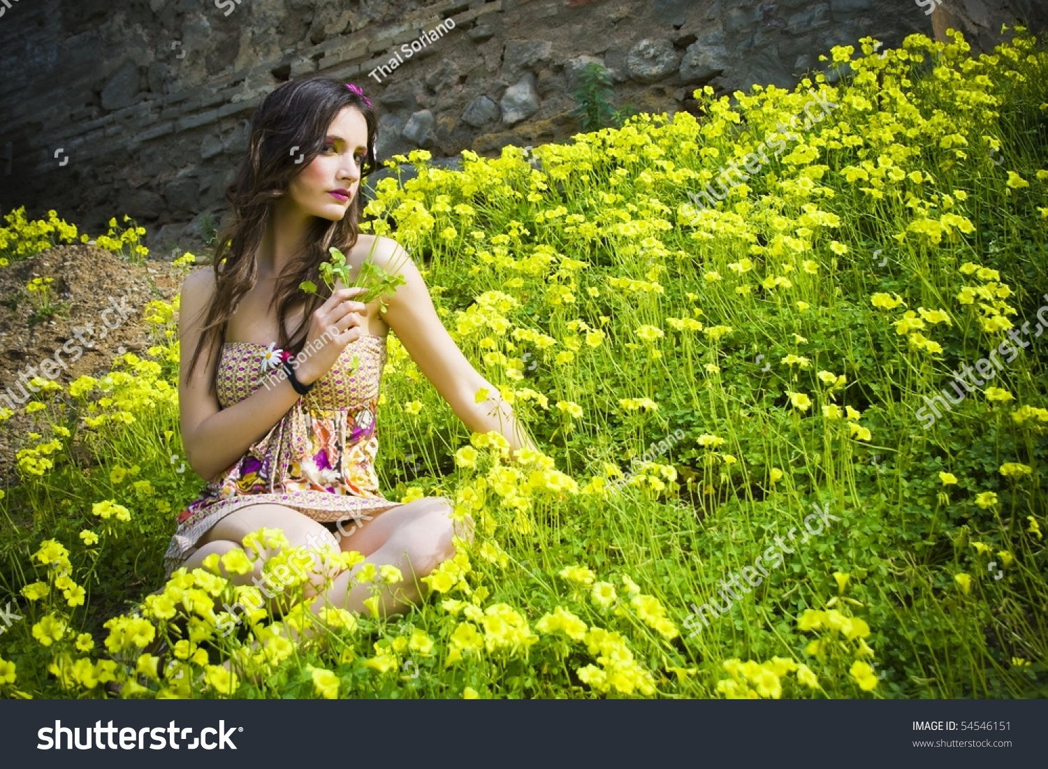 Beautiful Hippie Girl Sitting Field Flowers Stock Photo ...