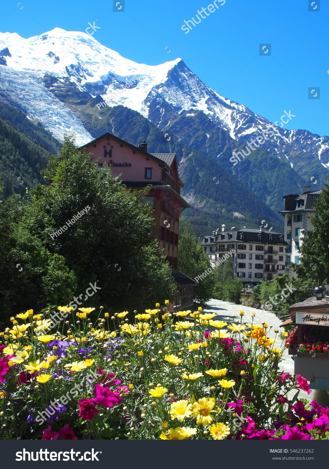 Chamonix mont blanc france europe on stock photo 546237262 chamonix mont blanc france europe on july 2016 colorful flowers in resort village izmirmasajfo Choice Image