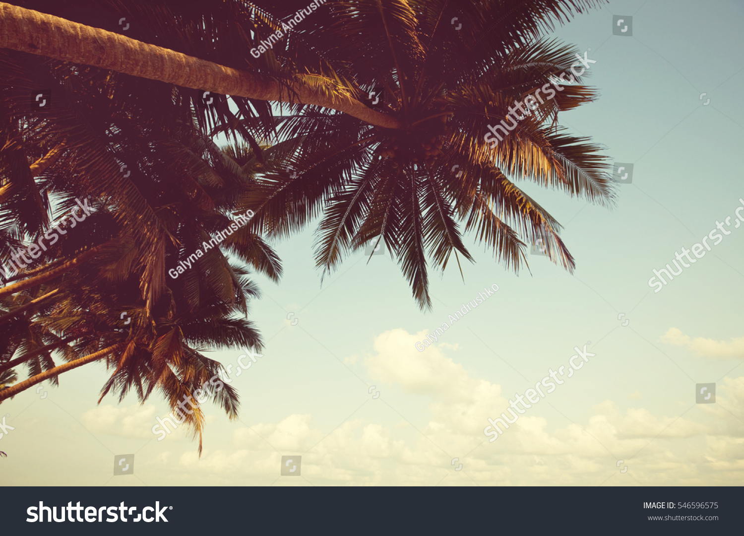 Serenity Tropical Beach Instagram Filter Stock Photo (Edit Now