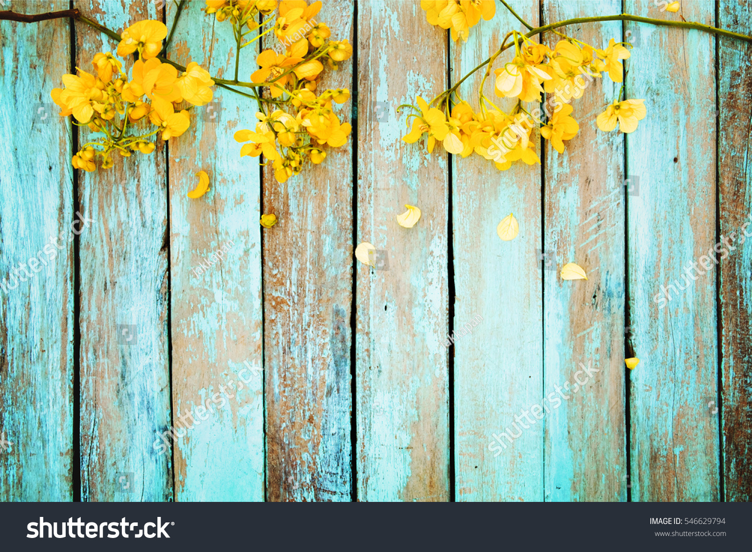 Yellow Flowers On Vintage Wooden Background Stock Photo Edit Now