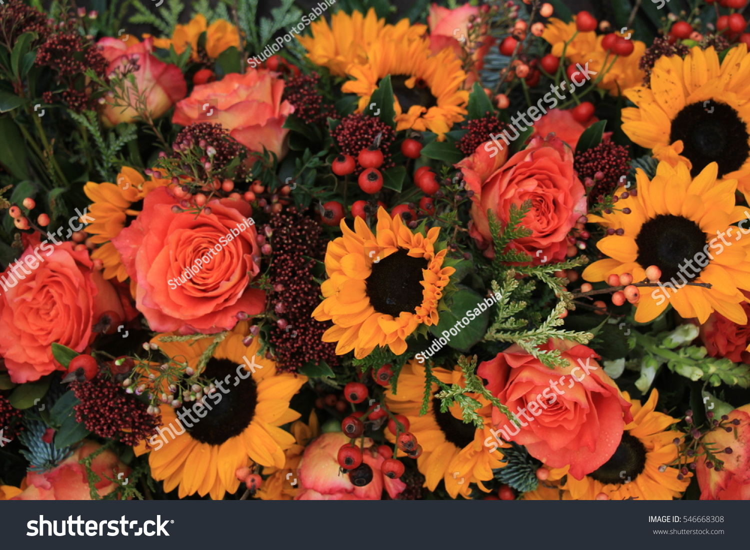 Big Yellow Sunflowers Orange Roses Floral Stock Photo Edit Now