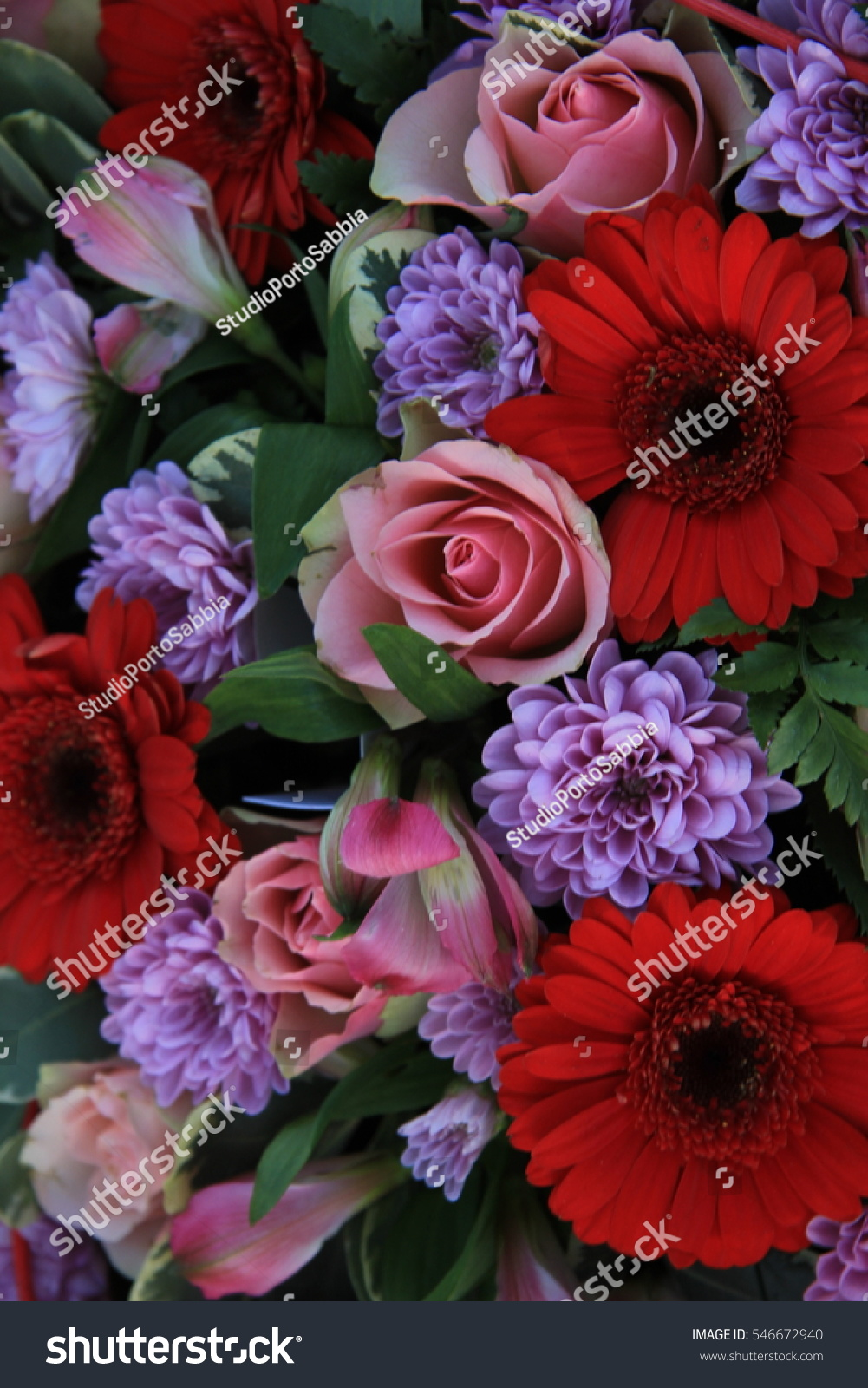 Mixed Flower Bouquet Red Pink Purple Stock Photo Royalty Free