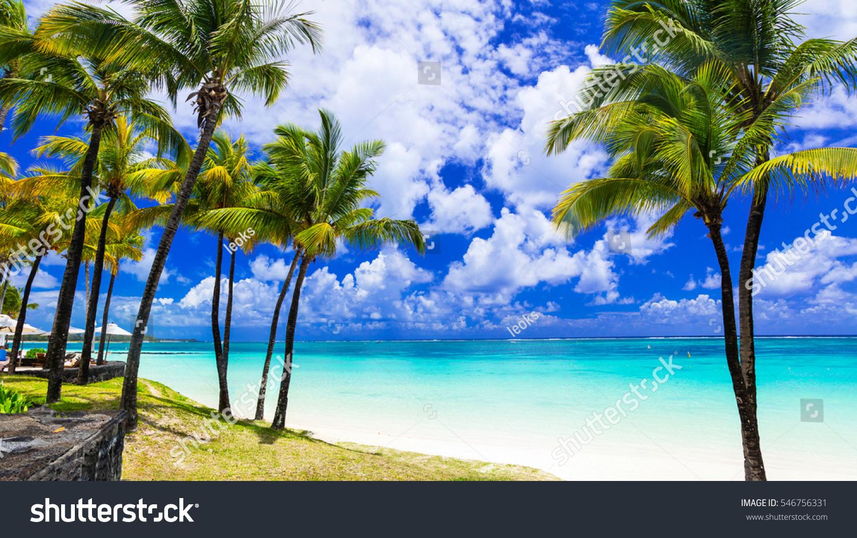 Tropical Island Beach Scenery: Tropical Scenery Beautiful Palm Beach Turquoise Stock