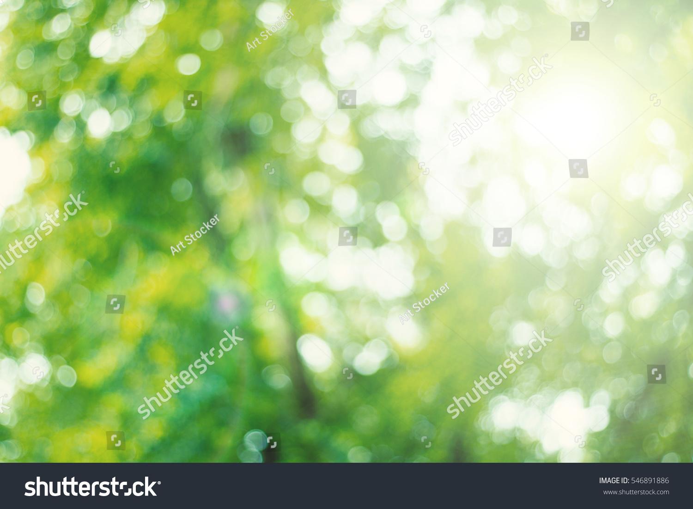 Bokeh Blur Leaf Background High Resolution Stock Photo Edit Now 546891886