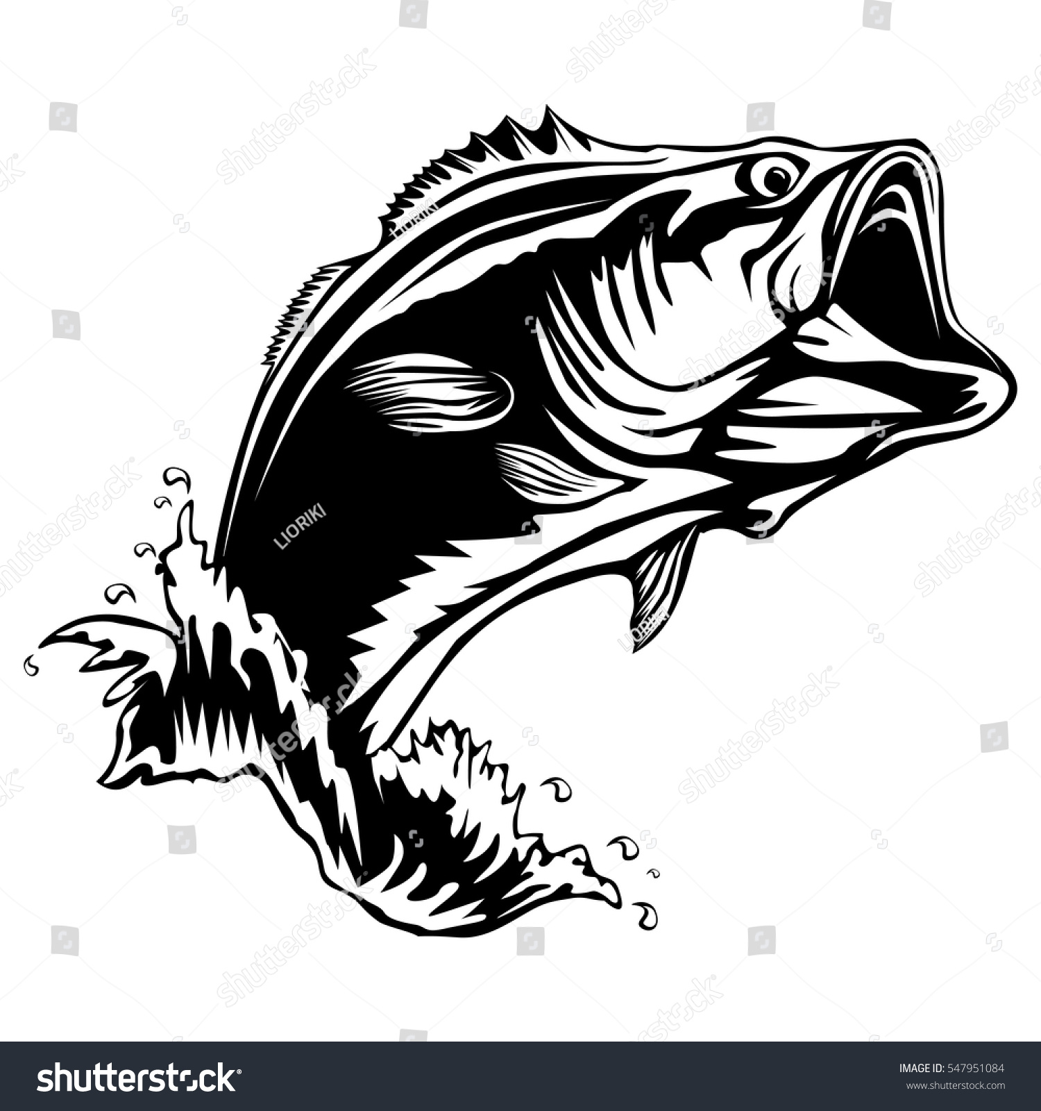 Bass Fish Isolated On White Perch Vector Illustration