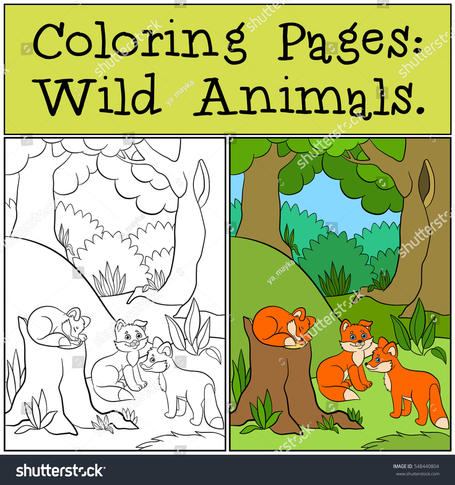 Coloring Pages Wild Animals Three Little Stock Photo (Photo, Vector ...