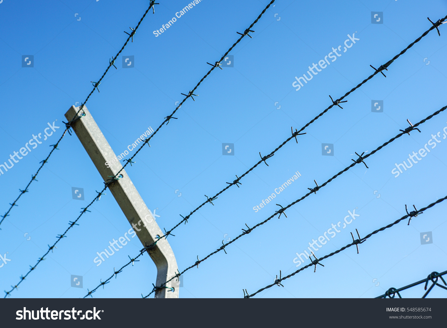 Coiled Razor Wire Sharp Steel Barbs Stock Photo (Royalty Free ...