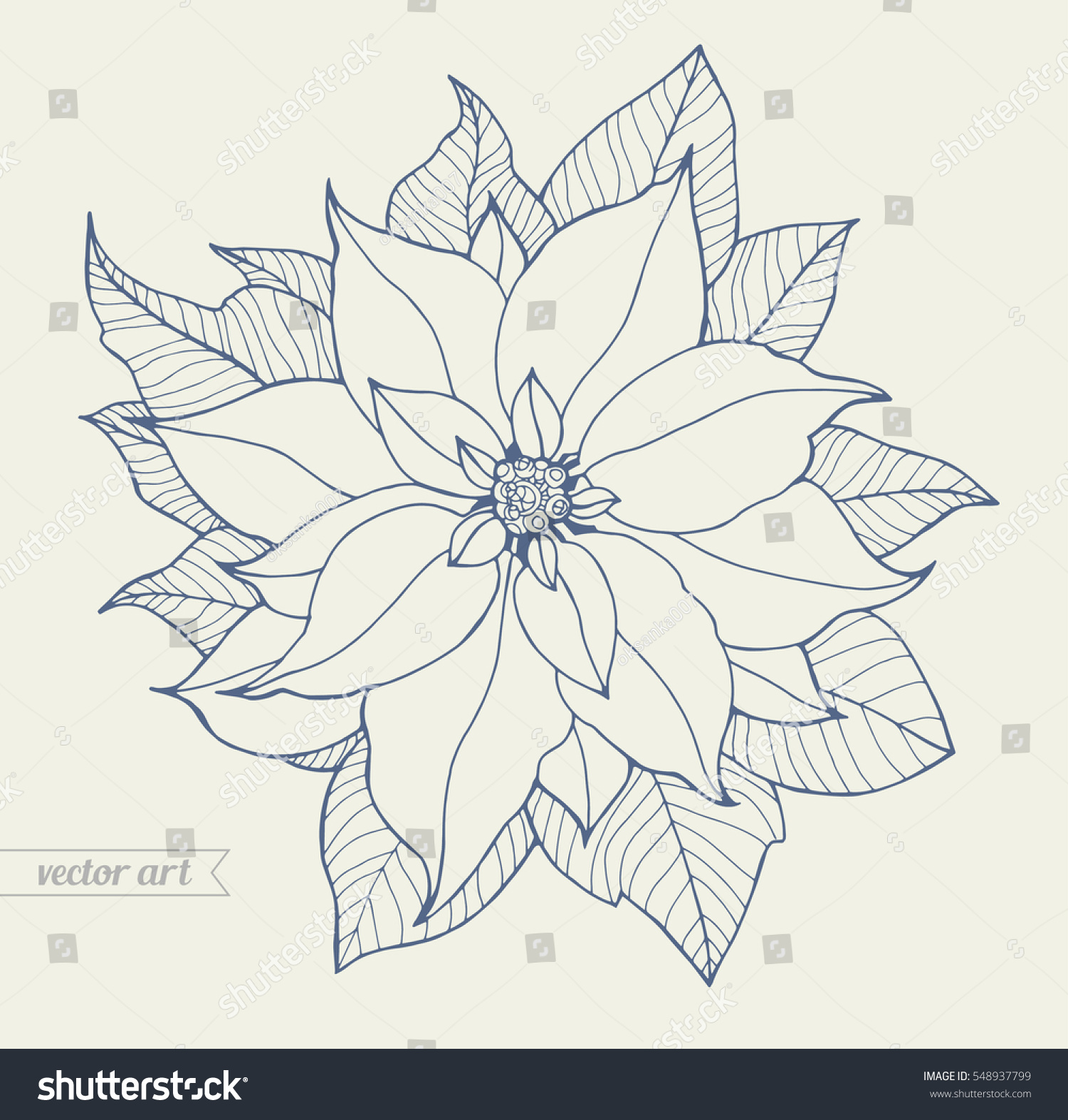 poinsettia isolated christmas flower vintage vector artwork