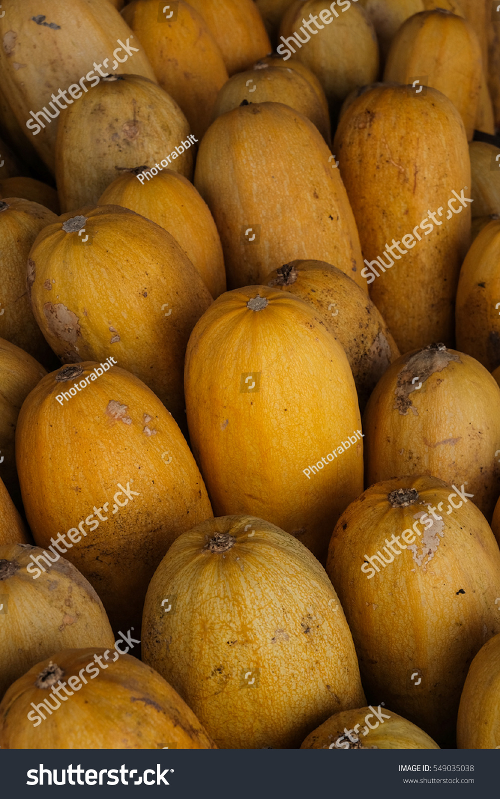 How long for squash to mature