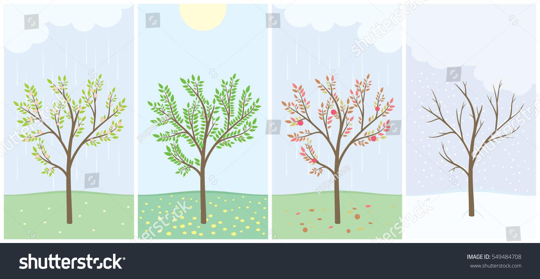 Four Season Tree Spring Summer Autumn Stock Vector 549484708 ...