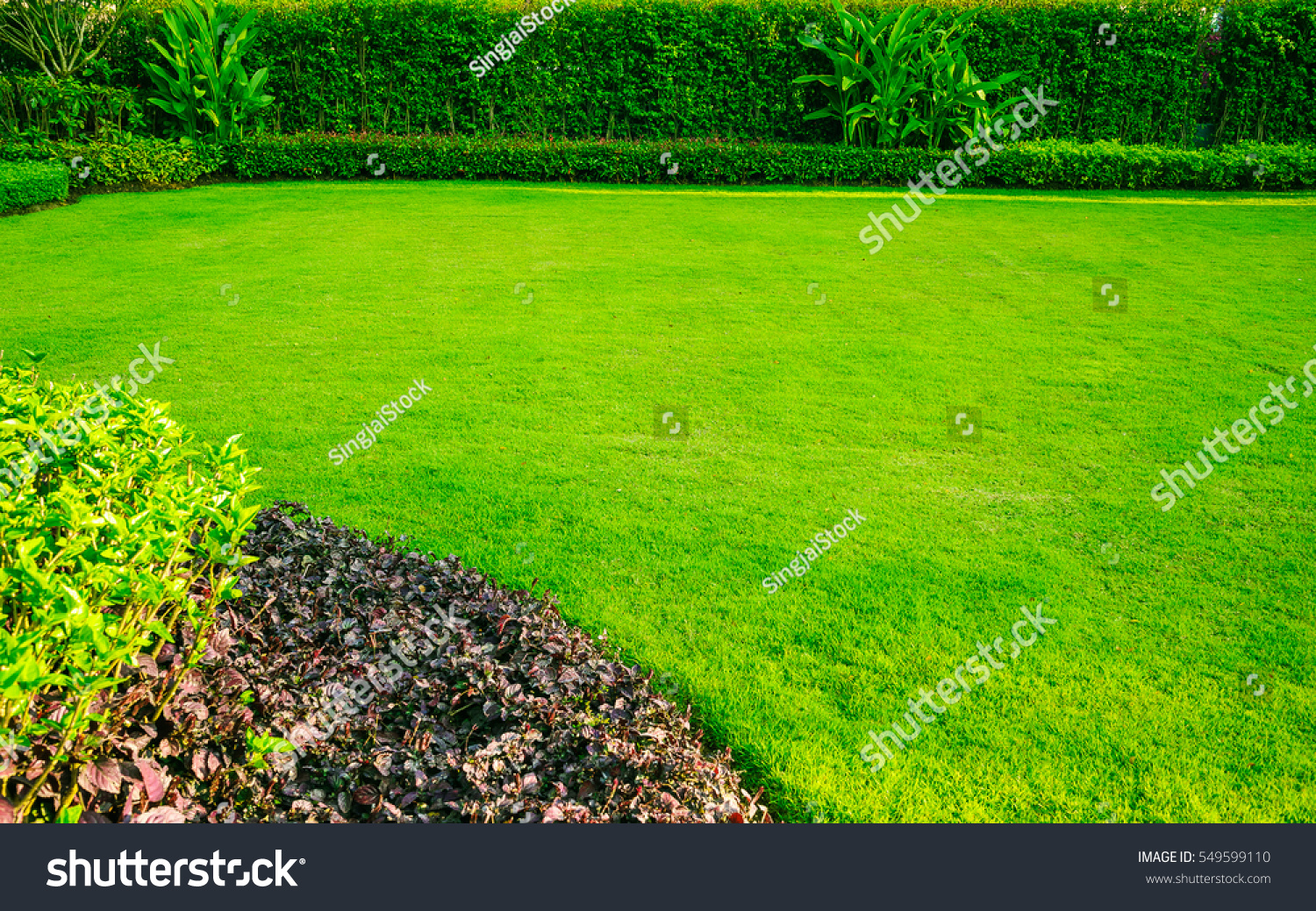 Green lawngarden landscape design stock photo 549599110 for Green landscape design