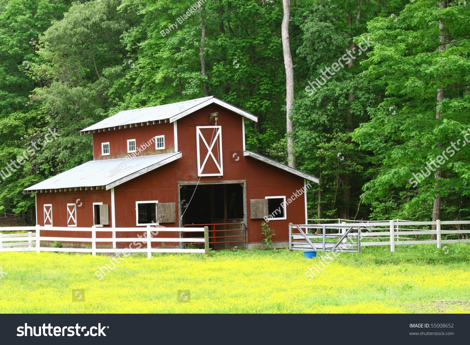 Old Red Horse Barn Woods Stock Photo Edit Now 55008652