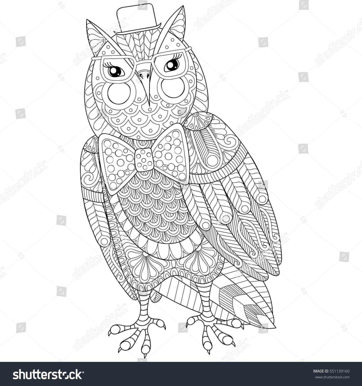 zentangle owl painting anti stress stock vector 551139160