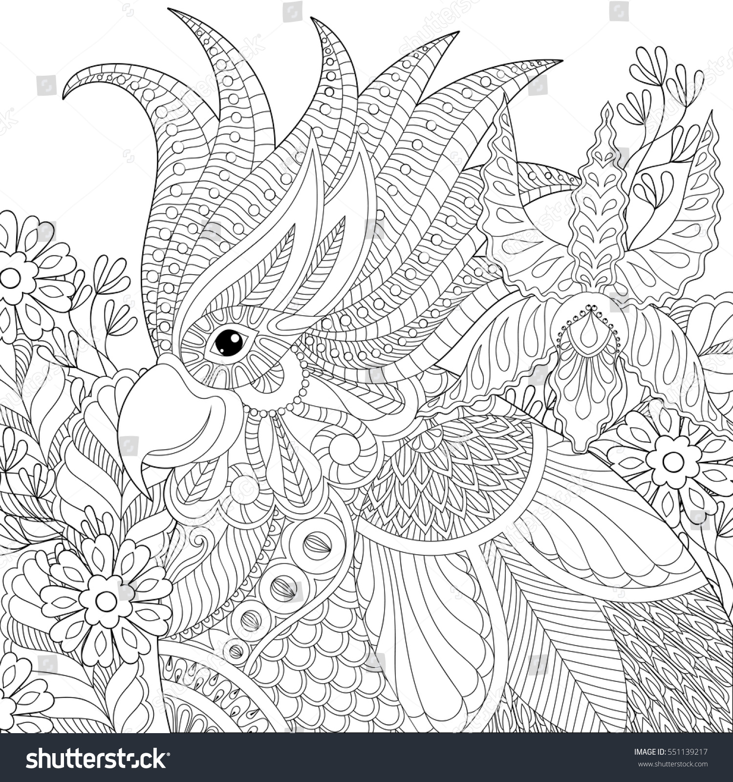 exotic zentangle cockatoo parrot anti stock vector 551139217