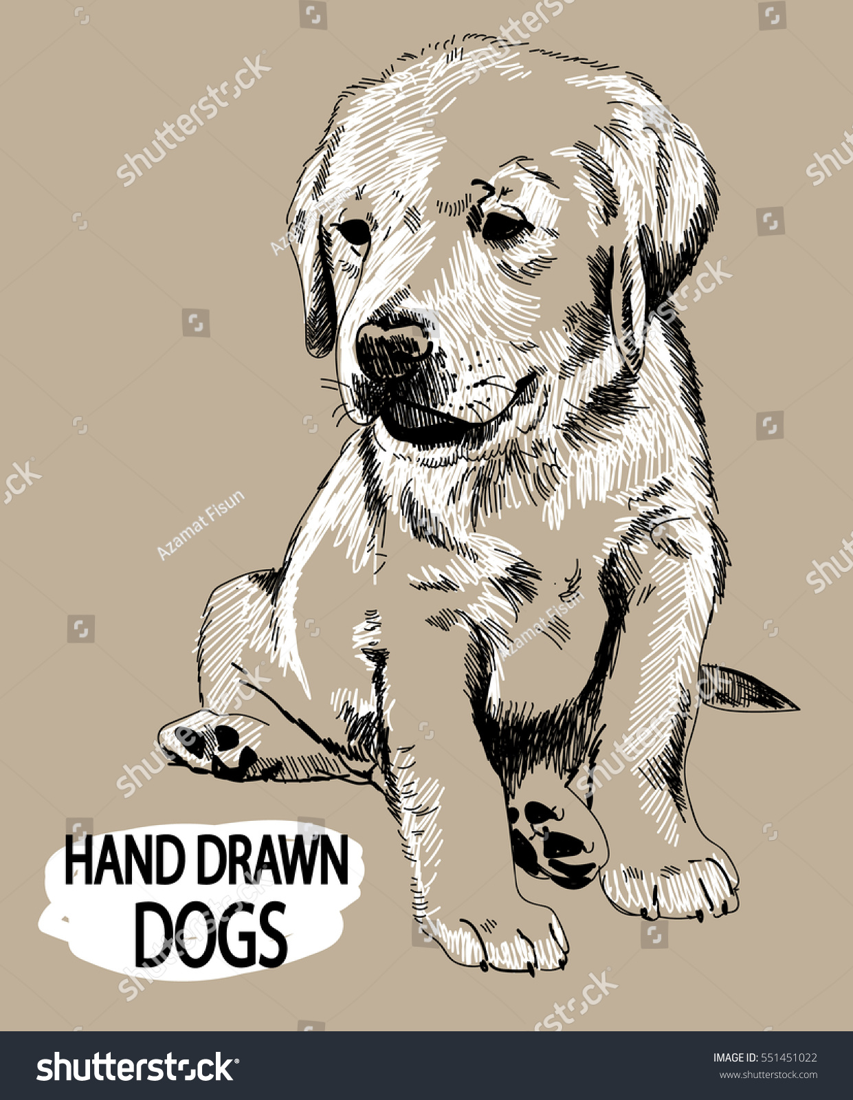 Labrador Puppy Sitting Drawing By Hand Stock Vector Royalty Free 551451022