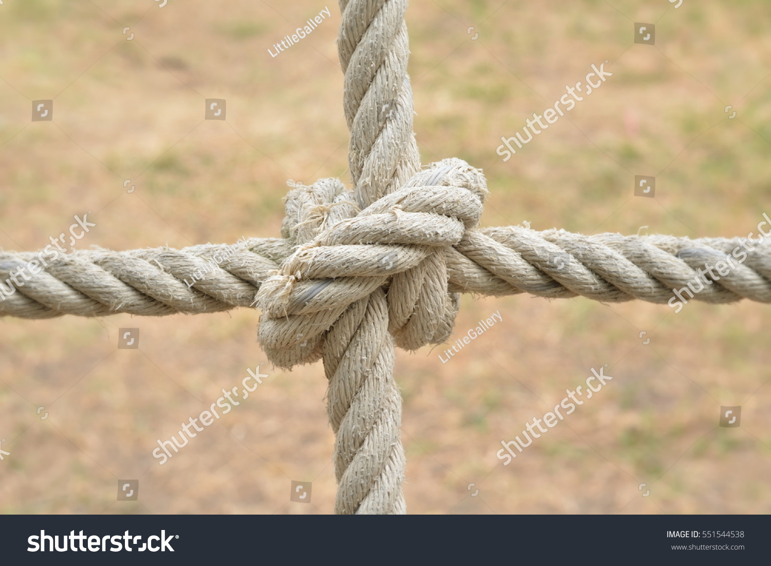Rope knot line tied together nature stock photo 551544538 rope knot line tied together with nature backgroundas a symbol for trust teamwork biocorpaavc Choice Image