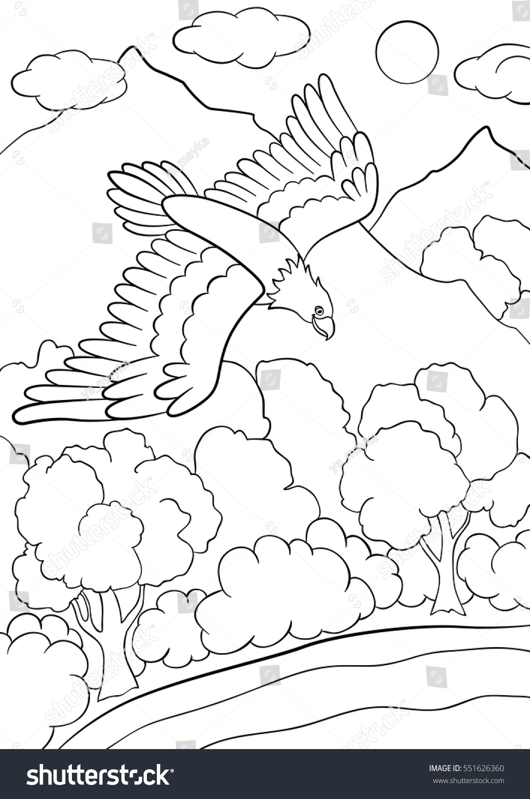 Coloring Pages Wild Birds Cute Eagle Stock Vector 551626360 ...