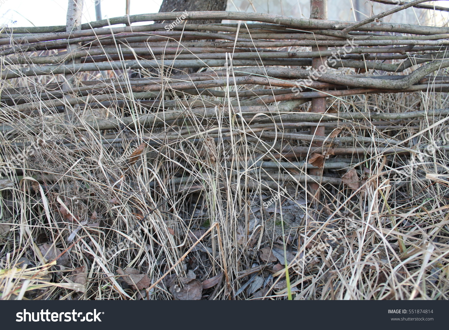 Lath Fence Stock Photo 551874814 : Shutterstock