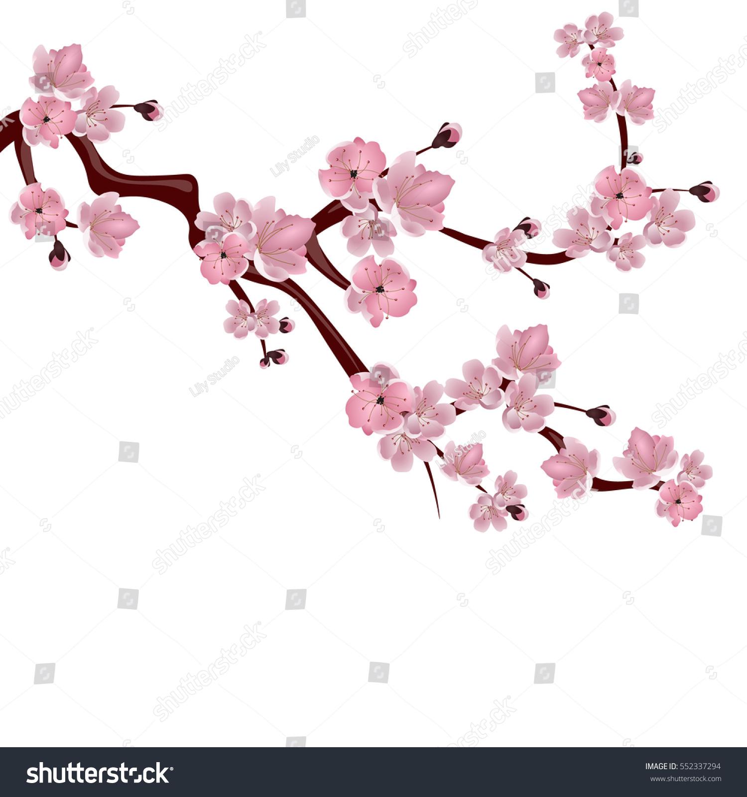 Arbol De Cerezo Japones ilustración de stock sobre Árbol de cereza japonés. una rama