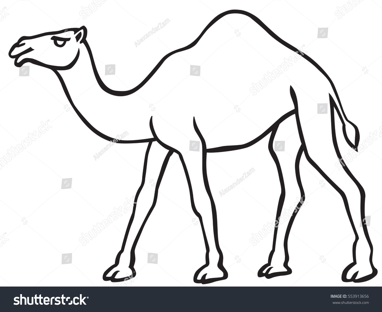 illustration contour camel icon stock vector 553913656 shutterstock