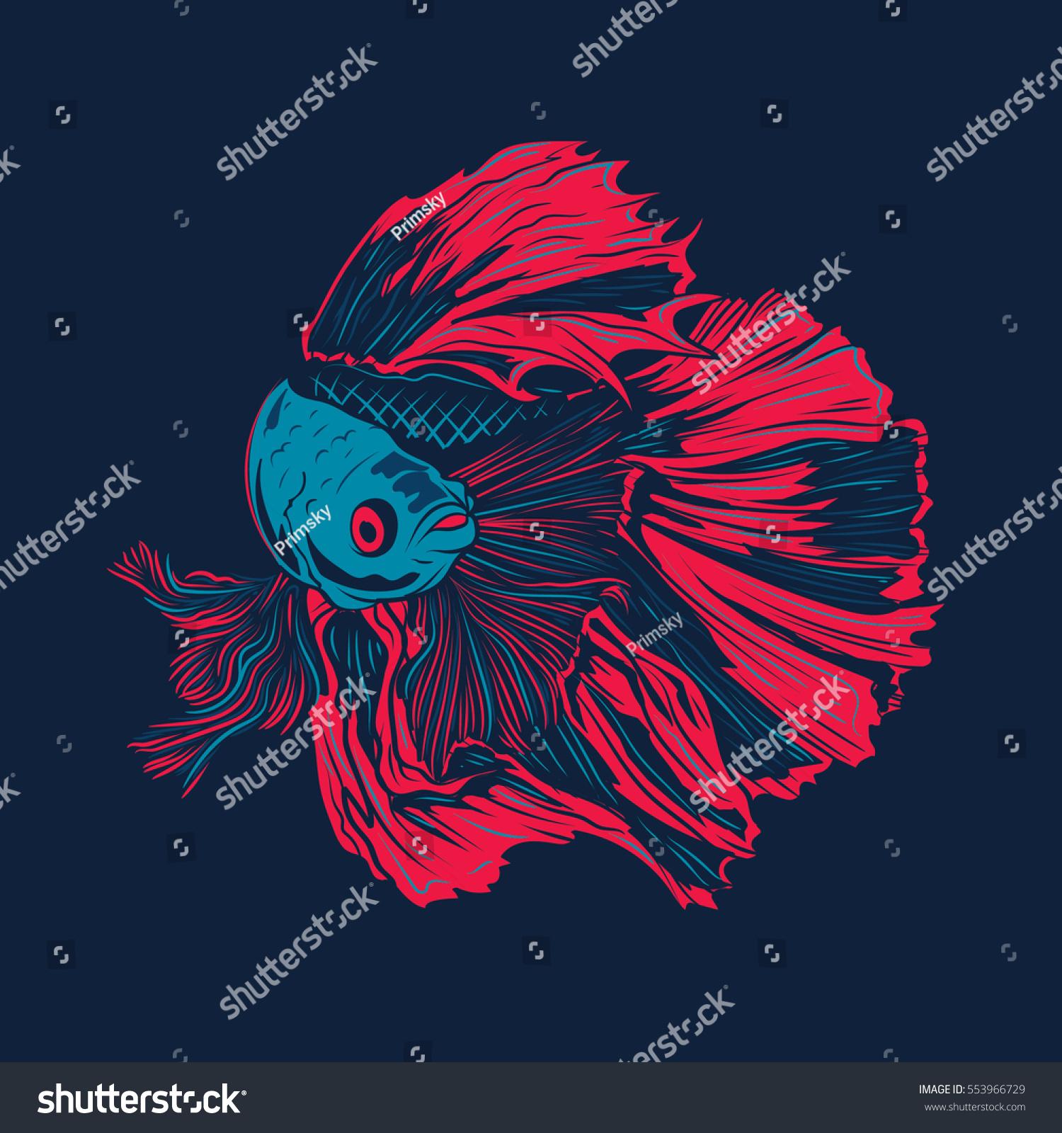 Colorful Betta Fish Vector Illustration Siamese Stock Vector ...