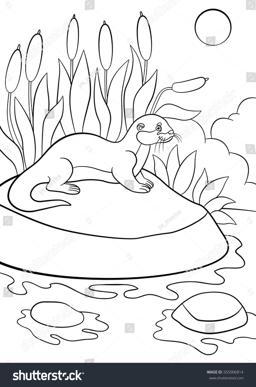 Coloring Pages Little Cute Otter Stands Stock Vector 555006814 ...