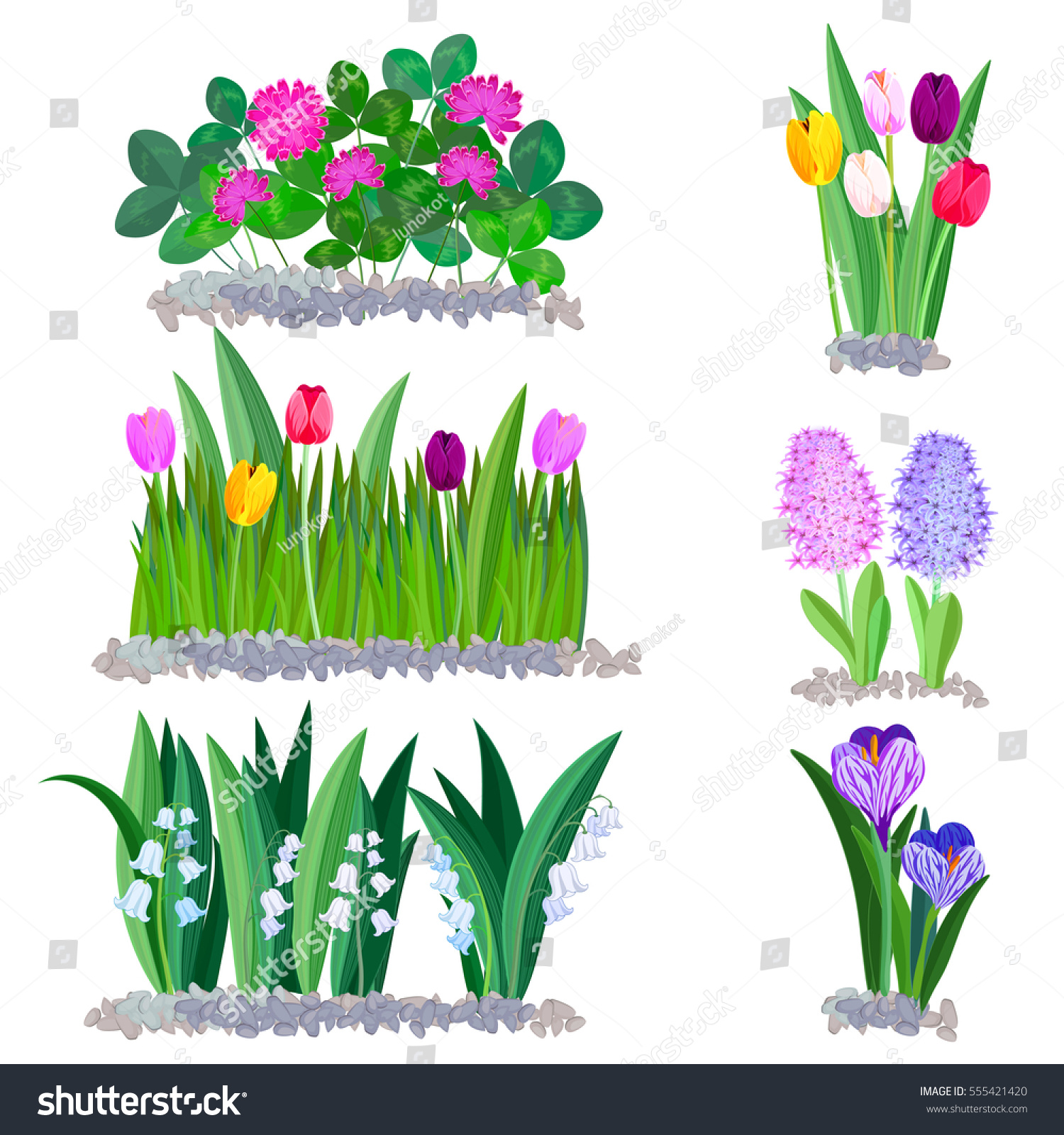 Spring Flowers Growing Garden Icons Borders Stock Vector Royalty