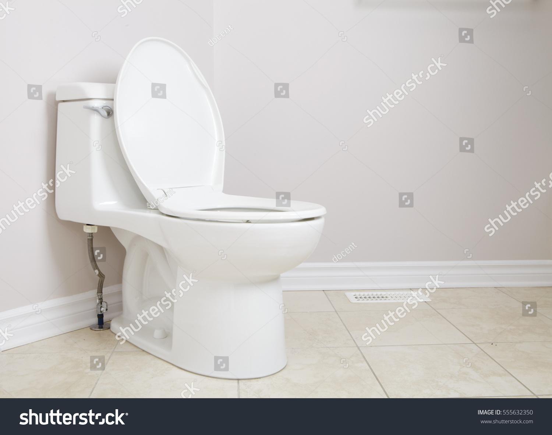 Lavatory Pan Toilet Paper WC Pan Stock Photo (Royalty Free ...