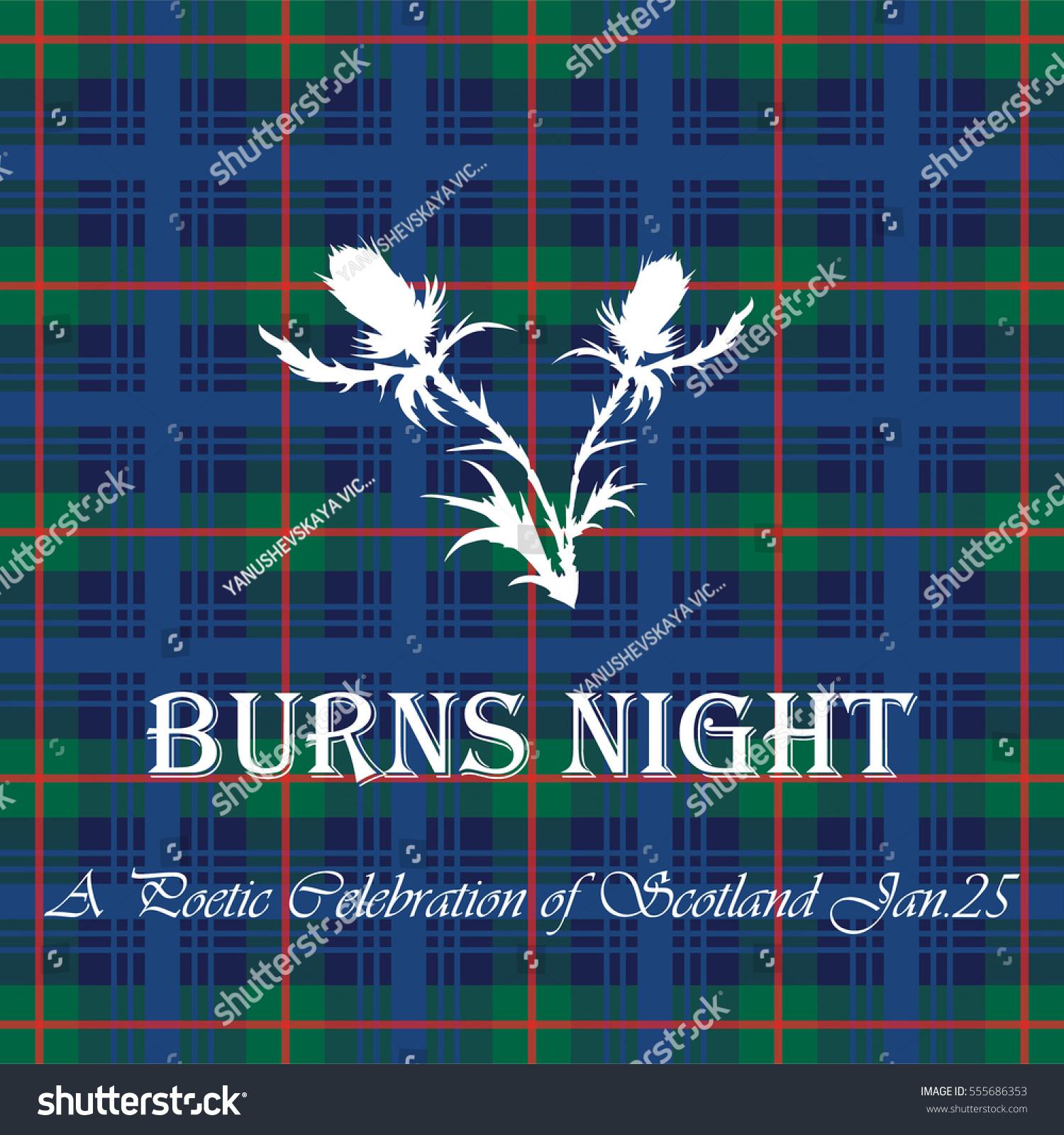 Card Burns Night On Tartan Background Stock Vector Royalty Free