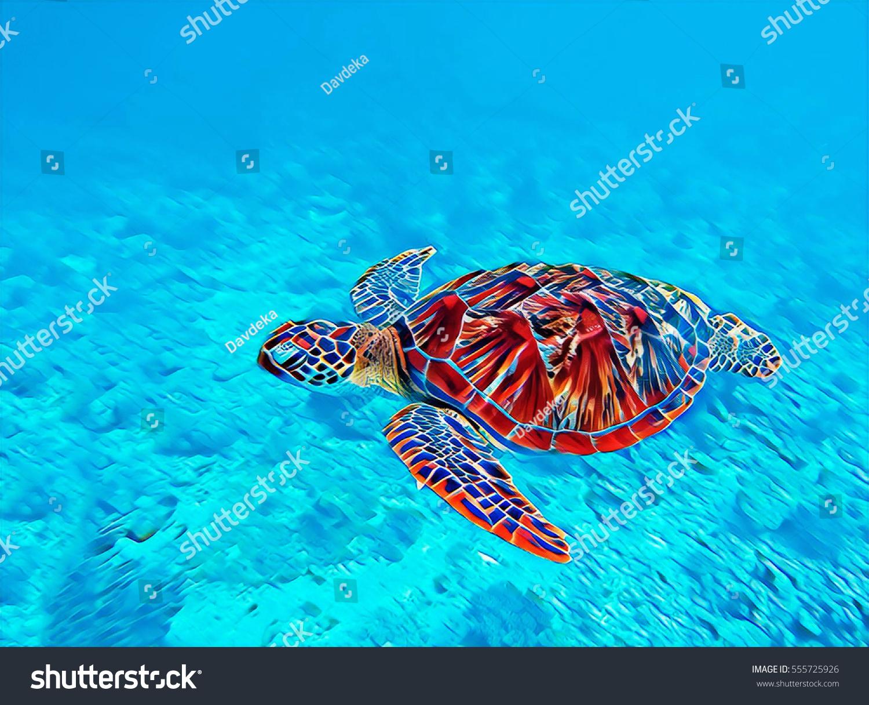 digital illustration sea turtle water swimming stock illustration