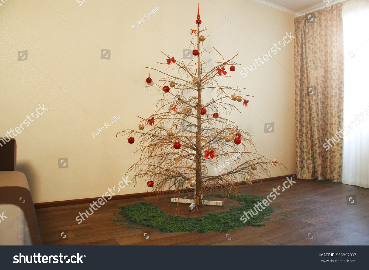 Dried Christmas Tree Stock Photo 555897007 - Shutterstock