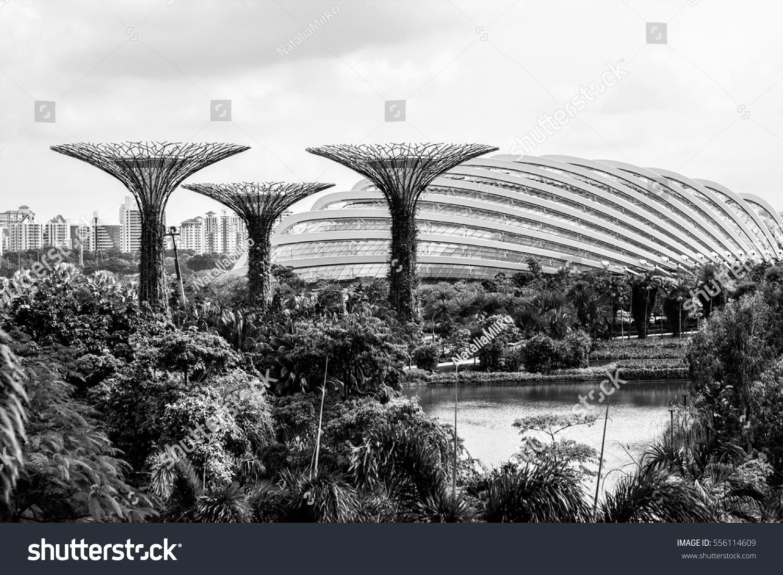 Singapore january 10 2017 black and white photo of the botanical garden