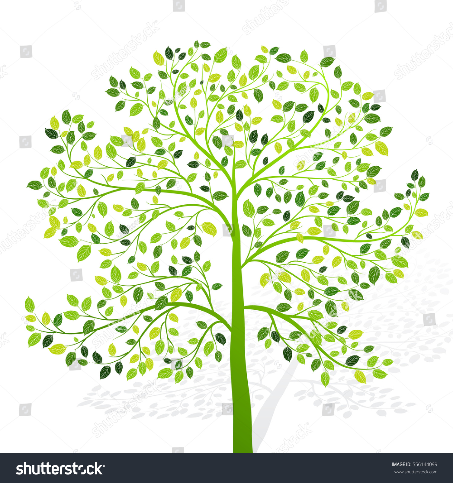 Green Tree Leaves On White Background Stock Vector (2018) 556144099 ...