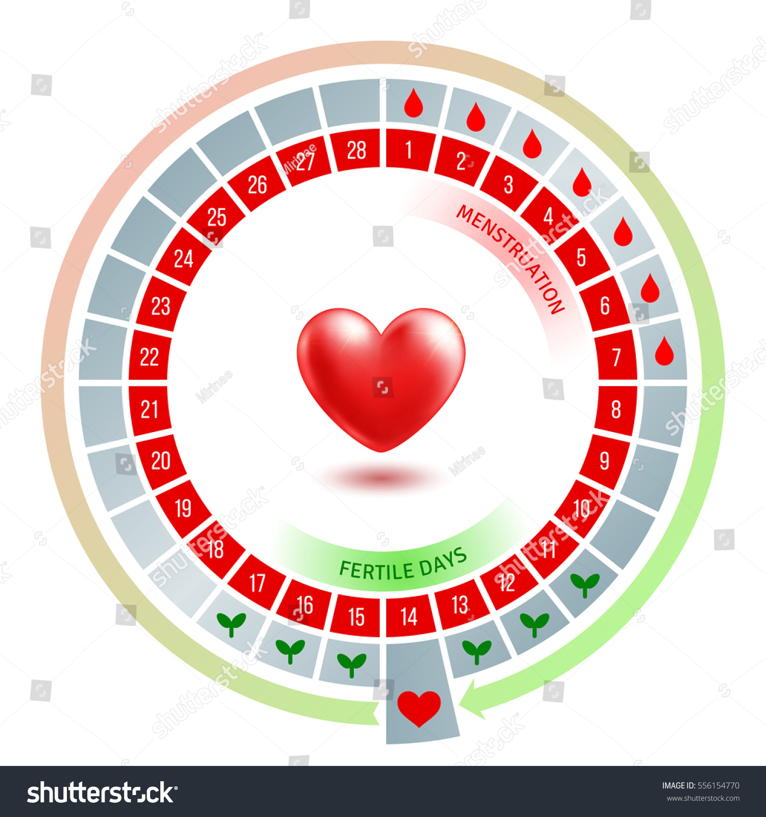Circular flow chart shiny red heart stock vector 556154770 circular flow chart with shiny red heart average number of days in menstrual cycle and nvjuhfo Image collections