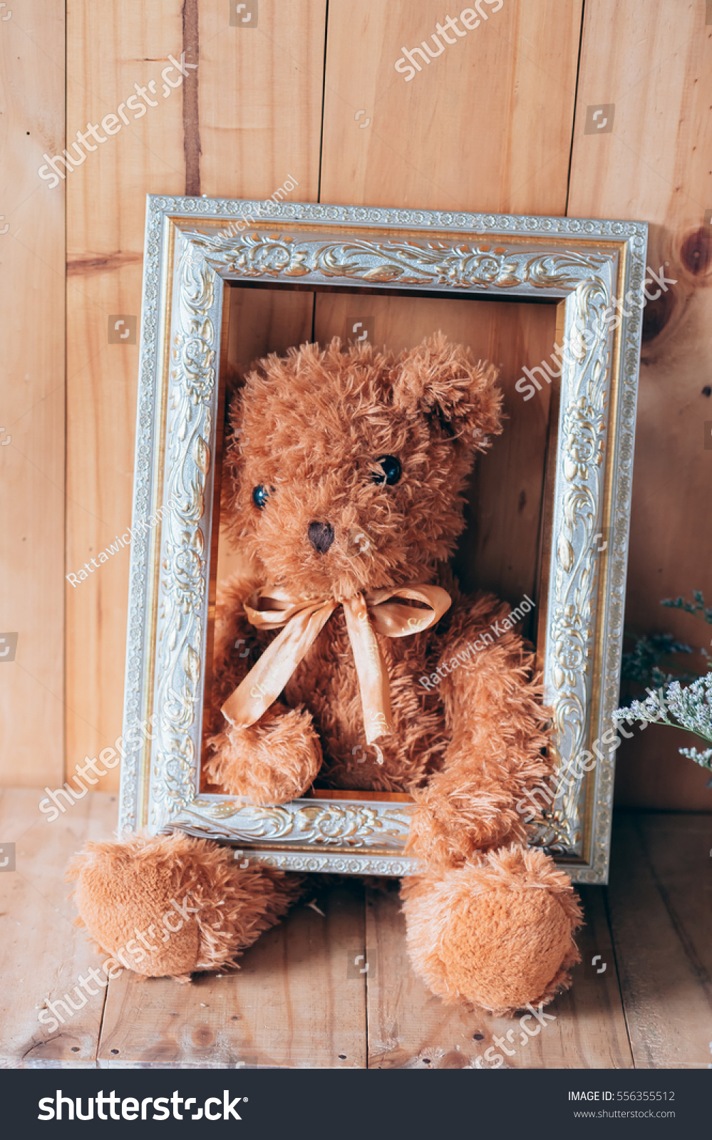 Single Brown Teddy Bear Holding Frame Stock Photo Edit Now