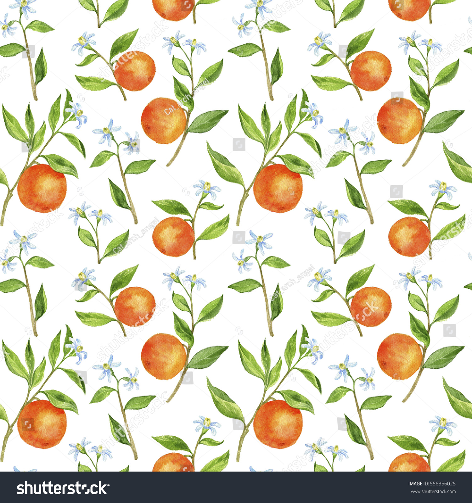 Seamless Pattern Orange Tree Branches Fruits Stock ...