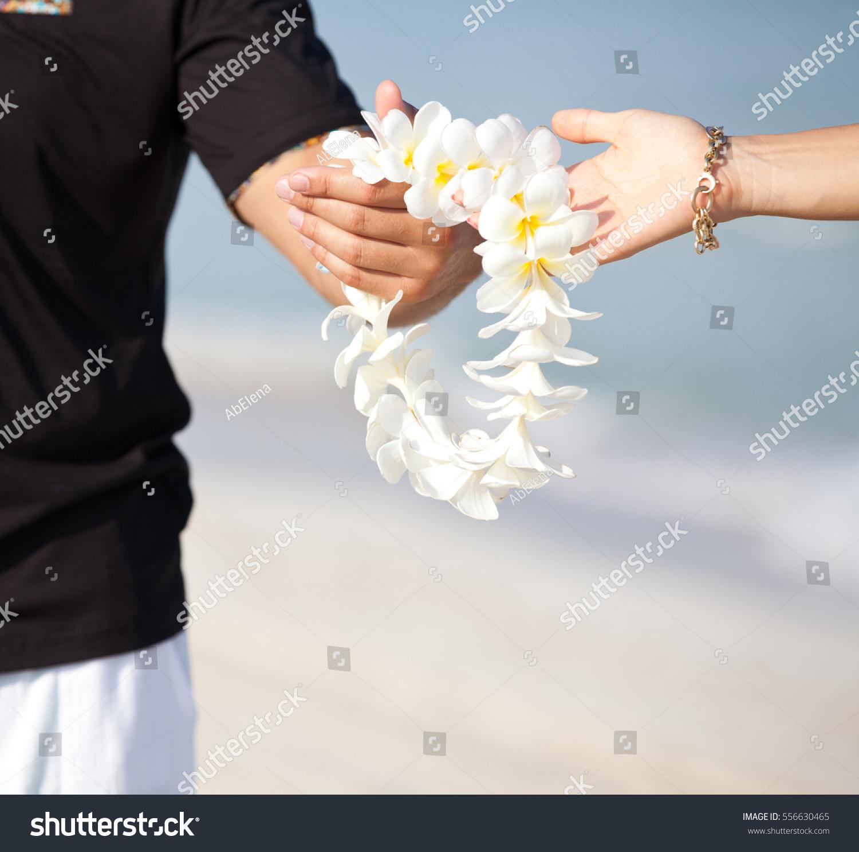 Couple hands holding flowers garland white stock photo royalty free couple hands holding flowers garland of white plumeria welcoming lei on the hawaiian island izmirmasajfo Images