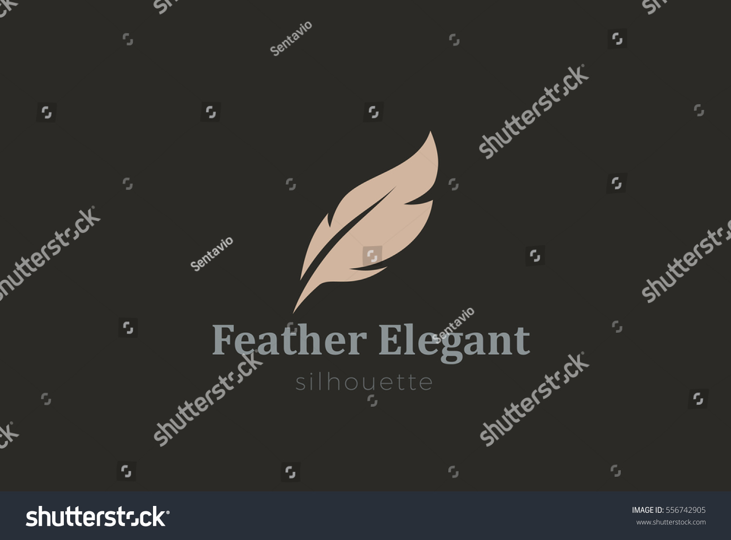 Quill Feather Pen Logo Elegant Design Stock Vector HD (Royalty Free ...