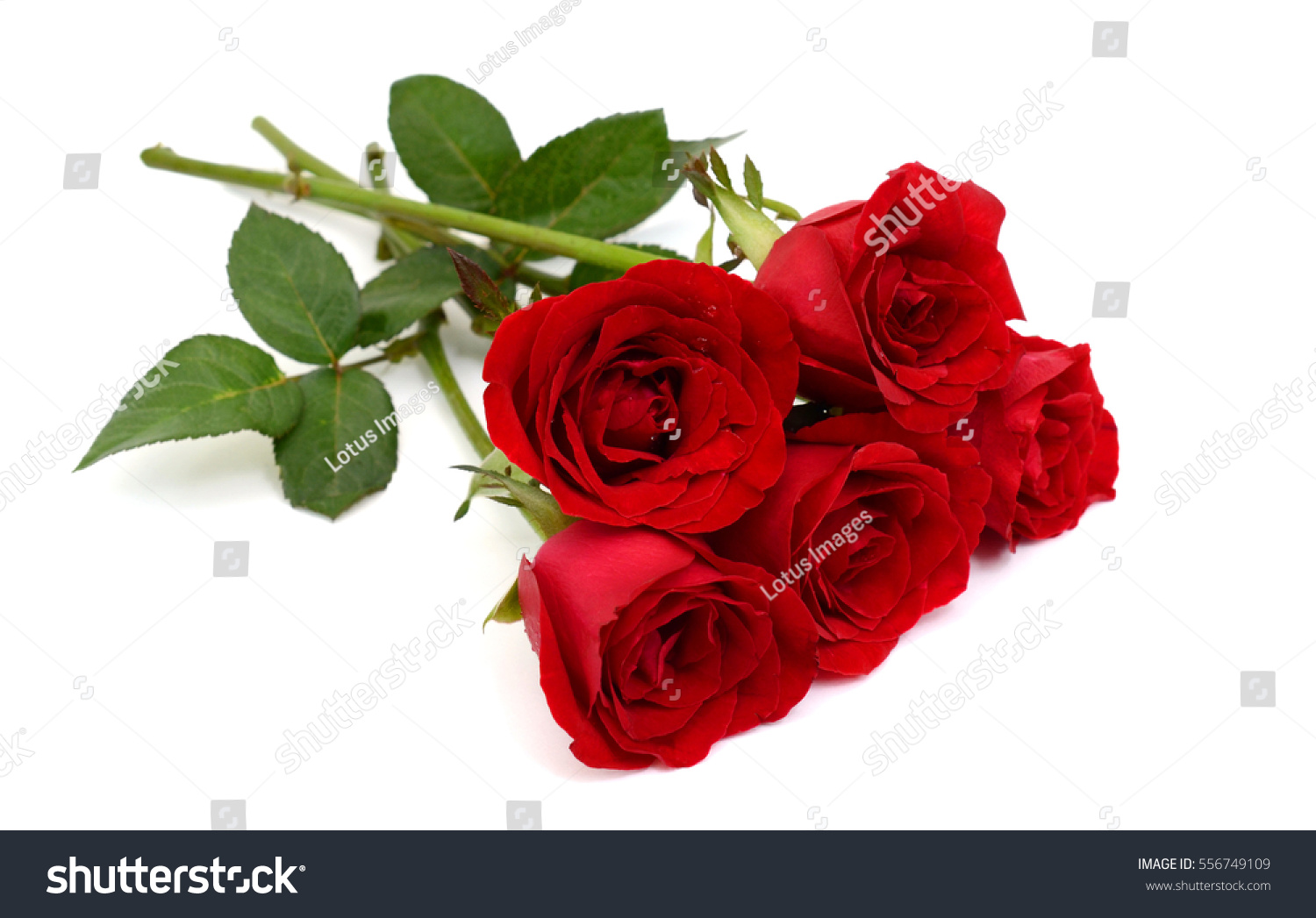Beautiful Bouquet Rose Flowers Isolated On Stock Photo Edit Now