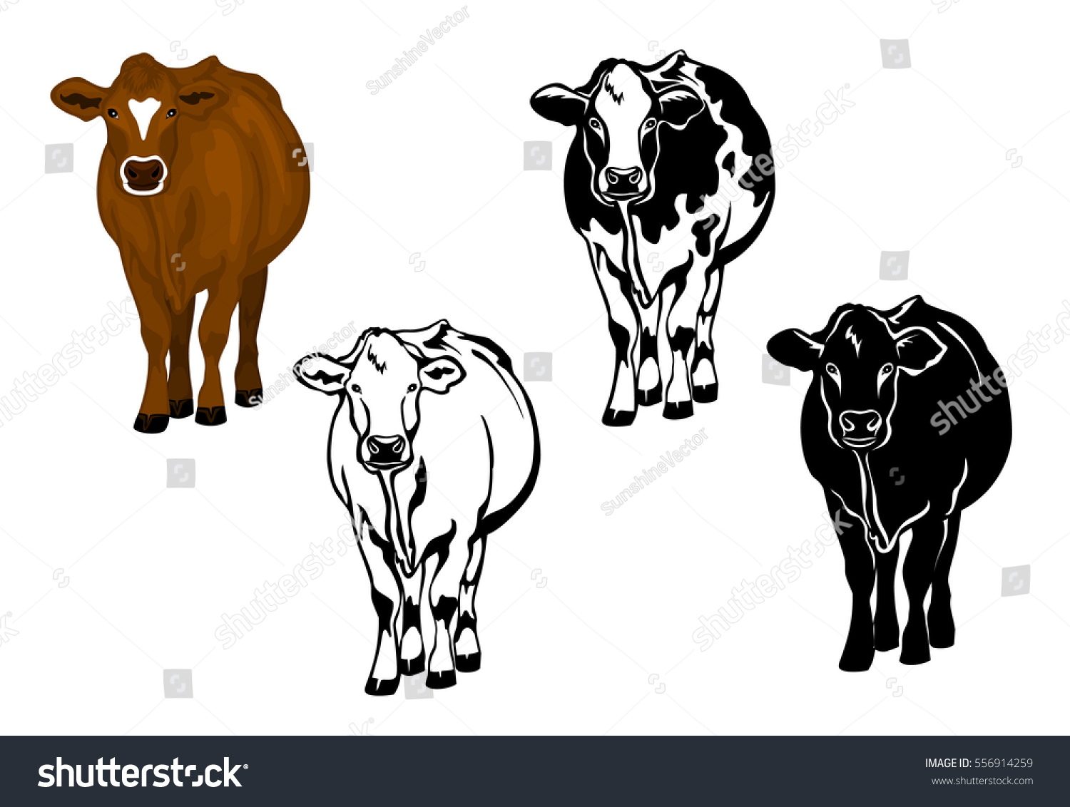 Front View Cow Brown Color Silhouette Stock Photo (Photo, Vector ...