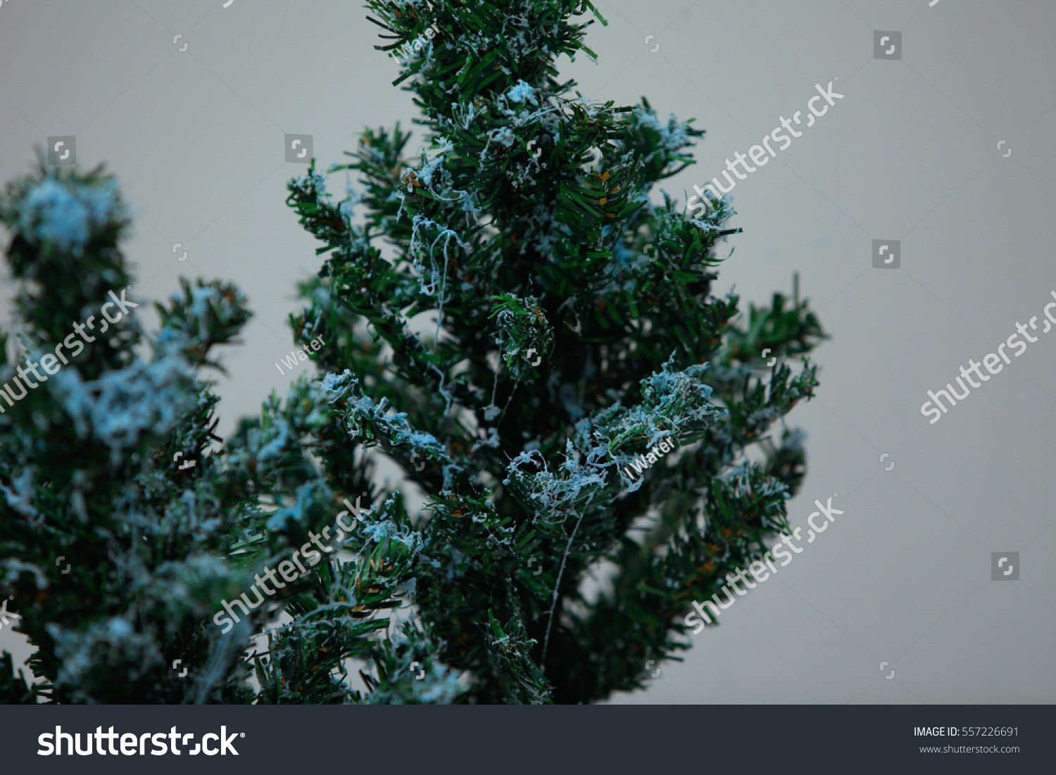Christmas Trees And That