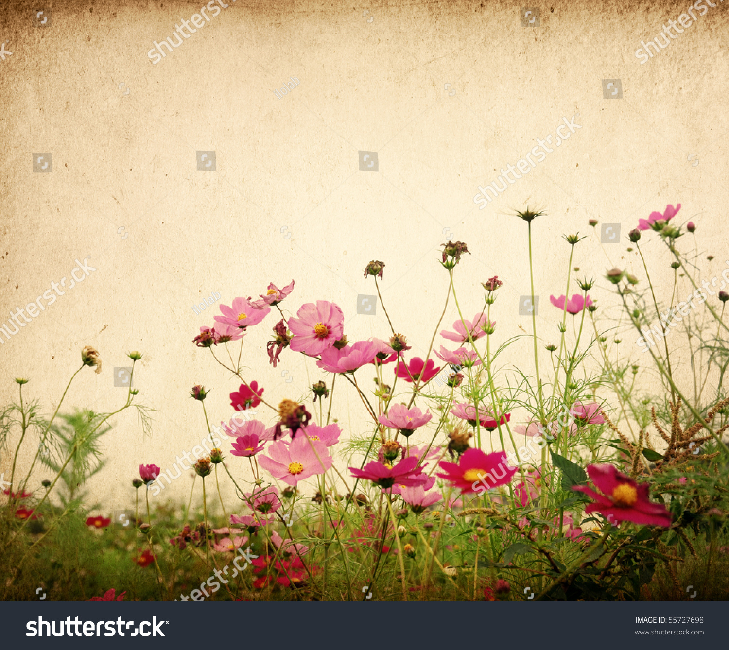 Vintage Flower Paper Background Stock Photo Edit Now 55727698