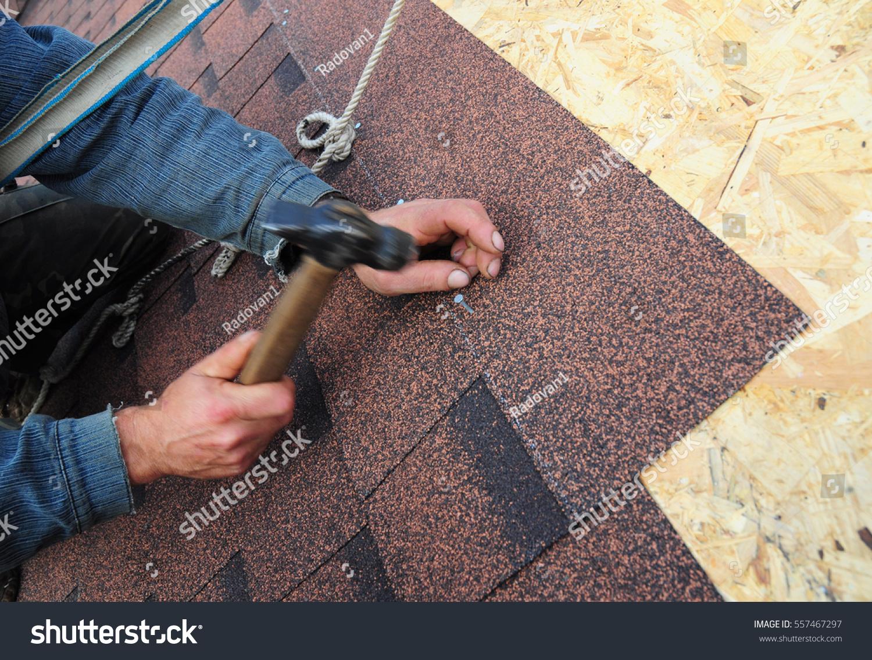 Roofer install asphalt roof shingles close stock photo 557467297 shutterstock - Put bitumen shingles roof cover ...