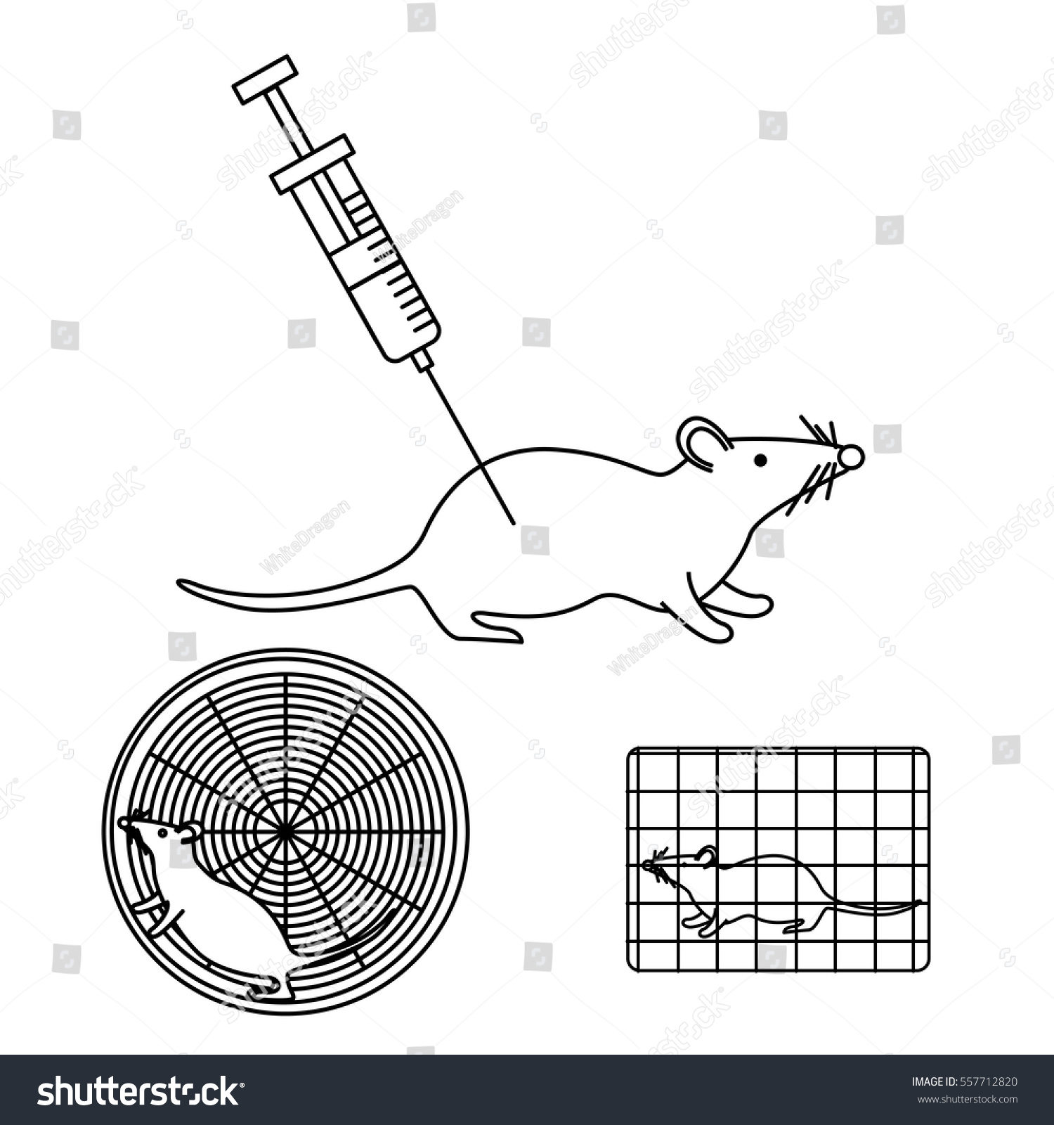 Lab Mouse Schematic